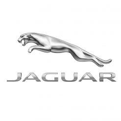 Colourant for Jaguar
